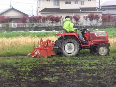 いよいよトラクターでたい肥と土を混ぜ合わせます